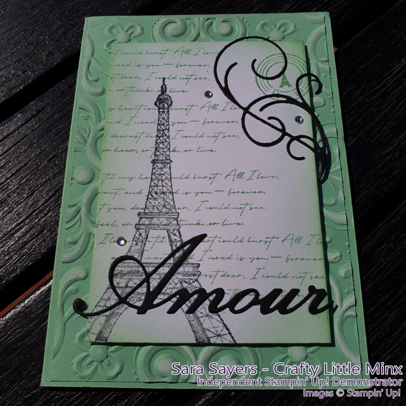 Parisian Beauty  Stamp Set used on the Casually Crafting Blog Hop Jan 2020 - Crafty Little MInx